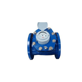 Removable Element Woltman Water Meters