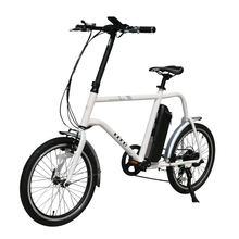 20 inch light weight color LCD display electric bike
