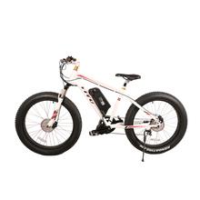 Bafang 48v 750w mid drive motor fat tire electric bike