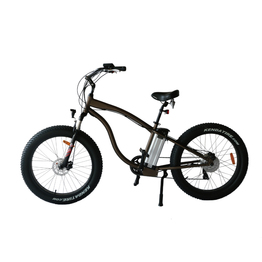 Fat tire electric electric bike