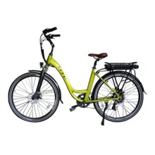 classical rear rack lithium battery hub motor electric bike