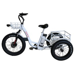 48v 500w front drive three wheel fat tire cargo electric tricycle