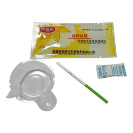 test kit of pregnancy