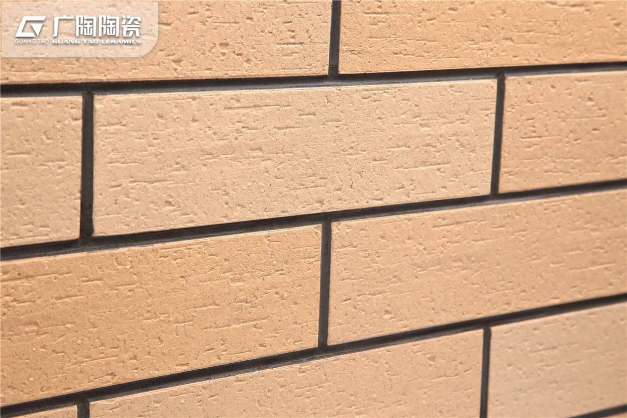Black And White External Floor Tiles Home Exterior Tiles Www