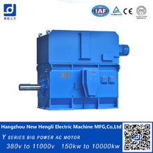High quality High Voltage AC Motor squirrel cage ac motor