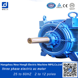 made in china high voltage inveter electric ac motor IP54