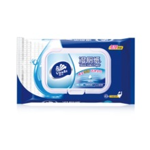 Vinda Moist Toilet Tissue VW3410