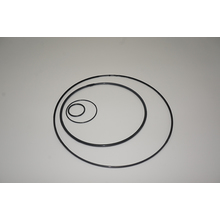 ptfe encapsulated silicone o-rings