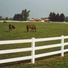 plastic pvc ranch fence designs