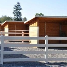 PVC Horse of 4  Rail fence/It's easy to clean.