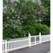 how to replace vinyl fence pickets/it's really easy
