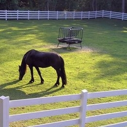 4 Rails white PVC Horse Fence/What animal is suitable for?