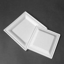 100% biodegradable Sugarcane dinner plates Square  sugarcane tableware