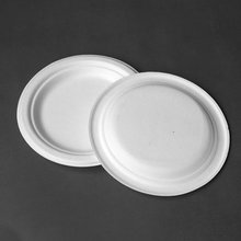 high quality biodegrable Disposable round bagasse paper Plates
