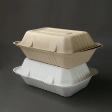 2-compartment Biodegradable sugarcane pulp disposable food container bagasse clamshell
