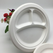 eco-friendly biodegradable sugarcane bagasse paper pulp disposable paper PLATE sugarcane tableware