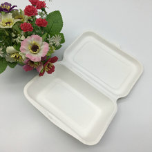 Biodegradable large paper pulp sugarcane bagasse food container
