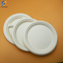 Biodegradable sugarcane pulp disposable plates