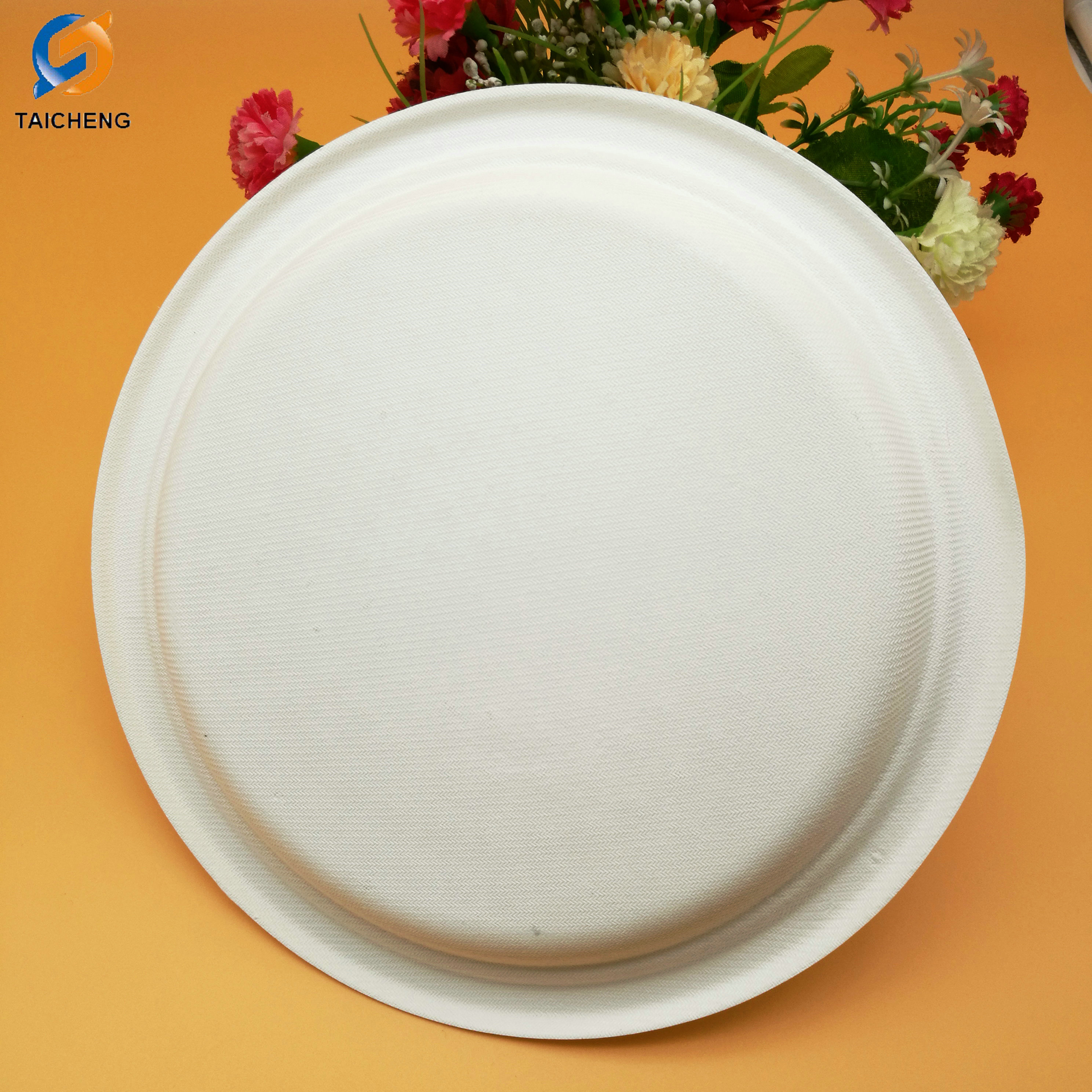 Biodegradable sugarcane pulp disposable plates & Biodegradable sugarcane pulp disposable plates biodegradable plate ...