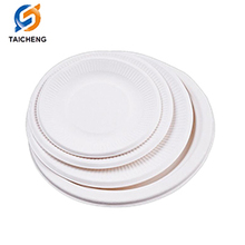 biodegradable sugarcane tableware paper plate dishes