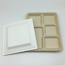 5 compartments food dinnerware sugarcane bagasse pulp plates