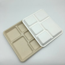 bagasse pulp 5 compartments food tableware sugarcane tableware plates
