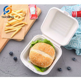 Environment-friendly Biodegradable sugarcane bagasse hamburger Box 6 inch