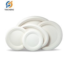 Heavy Duty Disposable Biodegradable 10 Inch Compostable OVAL Plates Sugarcane Fiber (Bagasse)