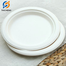 compostable and biodegradable, 10 inches oval sugarcane pulp disposable plate