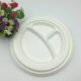 compostable virgin pulp 3 compartment sugarcane bagasse plate