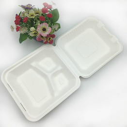 Compostable 9'' bagasse clamshell 3 compartment food box