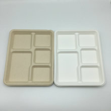 5 compartment rectangle recycled bagasse plate