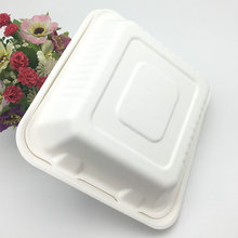 eco-friendly biodegradable bagasse food box clamshell