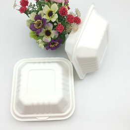 Household compostable bagasse food box clamshell
