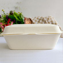 grease proof sugarcane bagasse pulp clamshell