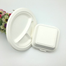 Dishes Plates Dinnerware Type bagasse Eco-Friendly Feature Plate