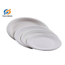 biodegradable bagasse disposable paper plate tray bowl eco friendly