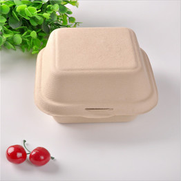 biodegradable compostable sugarcane paper pulp 6 inch hamburger box