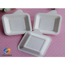 biodegradable sugarcane disposable paper plate