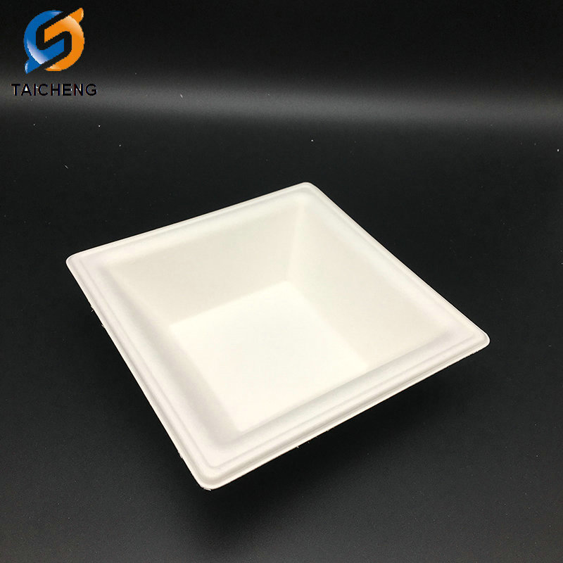 eco friendly sugarcane bagasse paper plate box with cover-bio-tableware.com & eco friendly sugarcane bagasse paper plate box with cover-bio ...