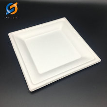 environmental sugarcane bagasse disposable paper square plate