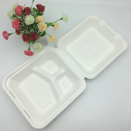 9 inch sugarcane paper pulp food container box