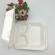 compostable 9 inch 3 compartment sugarcane food container box