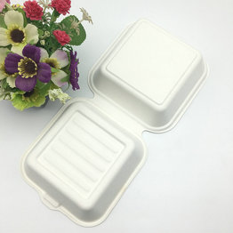 compostable sugarcane paper pulp 6 inch hamburger clamshell