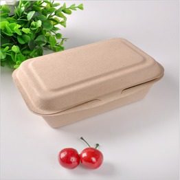 sugarcane virgin pulp compostable food container clamshell