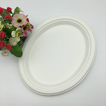 white oval Eco-Friendly sugarcane trays and dishes