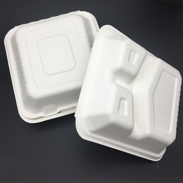 take away biodegradable sugarcane bagasse clam shell box