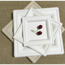 Biodegradable Sugarcane Bagasse Pulp Cake Tray with Square Shape
