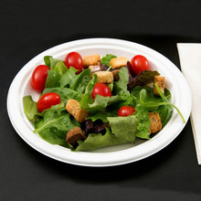 High Quality Biodegradable Dinnerware Party Paper Plate with Bagasse Pulp Material