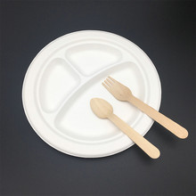 High Quality Compostable Biodegradable Disposable Paper Plate